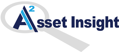 Asset Insight, LLC logo